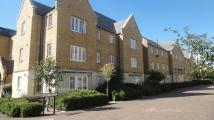 Nightingale Gardens Apartment to rent