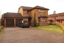 4 bed Detached house to rent in Westfield Road, Brundall...