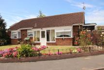 Wood Green Detached Bungalow for sale