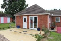 Semi-Detached Bungalow to rent in Pack Lane, Lingwood...