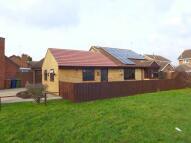 Detached Bungalow in Barnfield Gardens, PE7