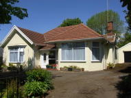 Detached Bungalow for sale in Gower Road, Killay...