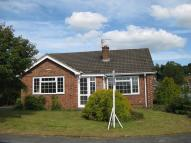 2 bed Detached Bungalow to rent in Kelsborrow Way, Kelsall...