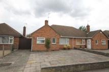 Semi-Detached Bungalow in Alfreton Road...
