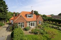 Detached Bungalow in Roecliffe, York