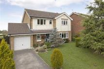 Detached house for sale in The Spinney...