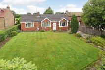 Detached Bungalow for sale in Hollins Lane...