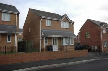 3 bedroom semi detached home to rent in Bloomfield Drive...