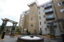 Flat to rent in Merlin Court, Ipswich