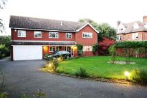 Detached home in Stone Lodge Lane, Ipswich