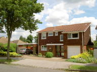 4 bedroom Detached property in Farm Drive, Shirley CR0