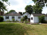 4 bedroom Detached Bungalow in Chaldon Common Road...