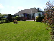 2 bed Semi-Detached Bungalow for sale in Chertsey Close, Kenley...