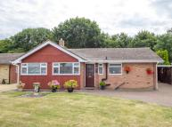 Detached Bungalow in Woodmere Avenue, Croydon...