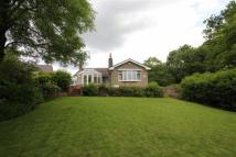 Detached Bungalow in Brookhouse Lane...