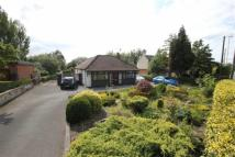 Detached Bungalow for sale in Werrington Road...