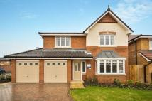 4 bed new property in Plot 158...