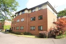 Flat to rent in Winchester Court...