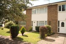 3 bed home to rent in Holmoak Walk, Hazlemere...