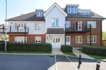 2 bed Flat in Ivy Lodge...