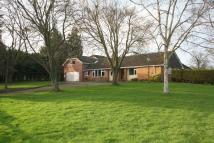 Detached Bungalow in Crowle Green, Worcester