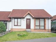 Detached Bungalow to rent in Alltan Place, Culloden...