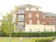 Lincoln Court Flat to rent