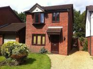 3 bedroom house to rent in St Davids Drive...
