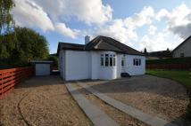 Detached home in 60 Agnew Avenue...