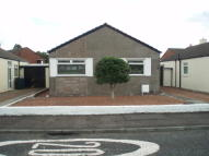 Detached Bungalow to rent in Mure Avenue, Kilmarnock...