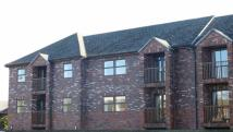 Retirement Property for sale in Regent Court, Oswestry...