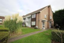 Dene Court Flat to rent