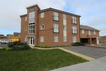 Apartment to rent in Maple Tree House...