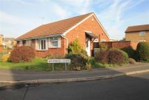 Semi-Detached Bungalow to rent in Whimbrel Close...