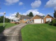 3 bed Detached house to rent in Ballfield Lane, Darton ...