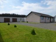 Detached Bungalow in TorvistaNewton...