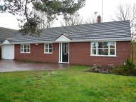 4 bedroom Detached Bungalow for sale in Armitage Lane, Brereton...