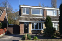 3 bed semi detached property to rent in Redwood Avenue, Leyland...
