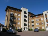 Manley Gardens Flat to rent