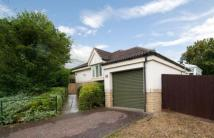 Cotswold View Bungalow to rent