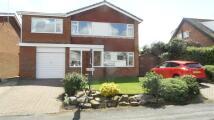 5 bedroom Detached house in Beech View Road...