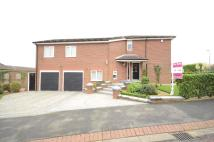 4 bedroom Detached home for sale in Dalton Heights, Seaham...