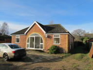3 bedroom Detached Bungalow to rent in Main Road, Martlesham...