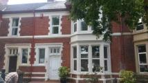 Terraced house in Marlborough Road Penylan