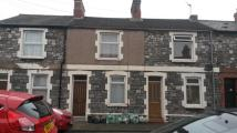 Terraced house in Kilcattan Street Splott