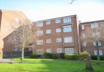 Flat in St Leonards, RH19