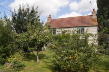 Cottage to rent in Croft Road, Upwell