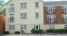 1 bed Ground Flat to rent in Peckerdale Gardens, Derby