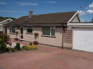 Detached Bungalow for sale in Sevenacre Close, Bagillt...