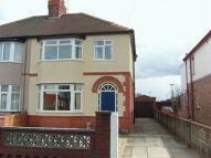 3 bedroom semi detached house to rent in Park Avenue, Shotton...